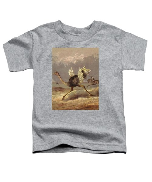 Chasing The Ostrich Toddler T-Shirt by English School