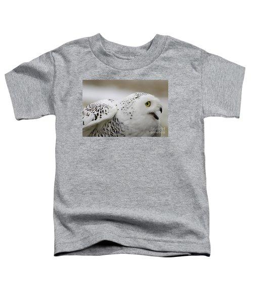 Cheeky Snow Owl Toddler T-Shirt