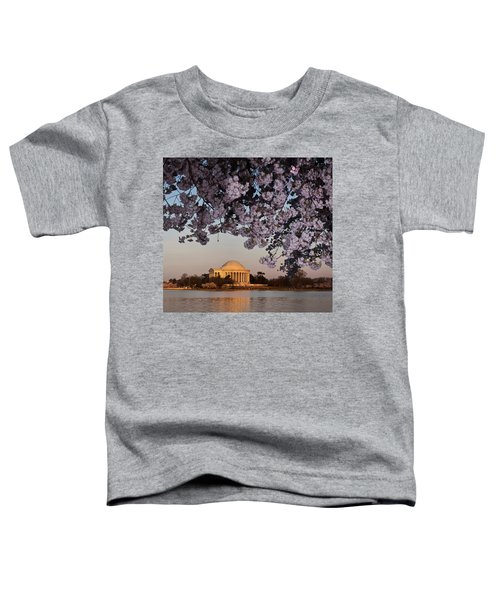 Cherry Blossom Tree With A Memorial Toddler T-Shirt by Panoramic Images