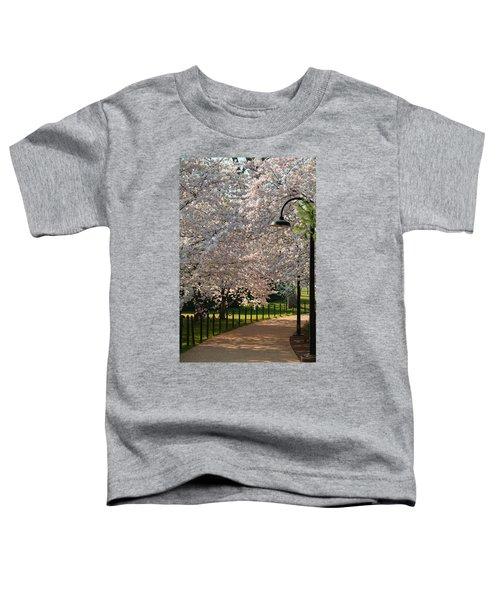 Cherry Blossoms 2013 - 060 Toddler T-Shirt