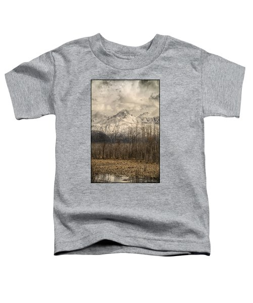 Chugach Mountains In Storm Toddler T-Shirt