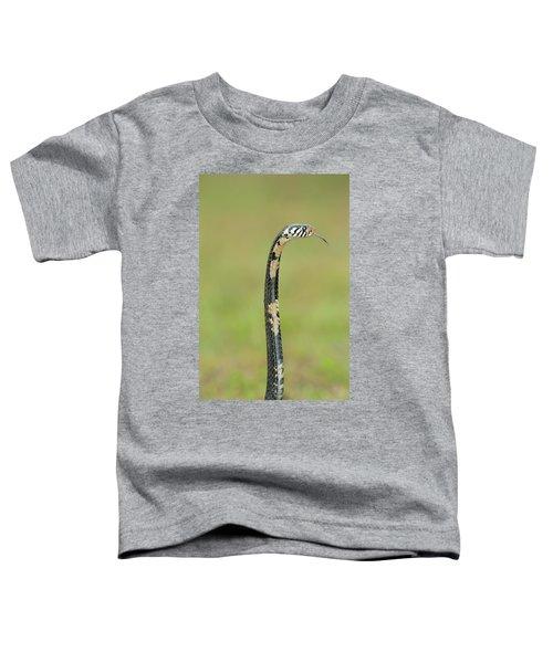 Close-up Of A Forest Cobra Naja Toddler T-Shirt