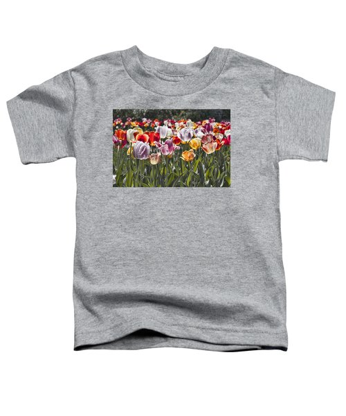 Colorful Tulips In The Sun Toddler T-Shirt