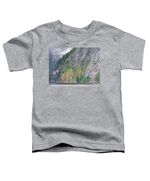 Colors Of Alaska - Misty Fjords Toddler T-Shirt