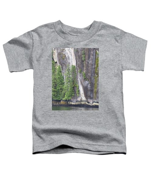 Colors Of Alaska - More From Misty Fjords Toddler T-Shirt
