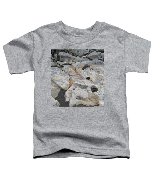 Connecticut River Bed Toddler T-Shirt