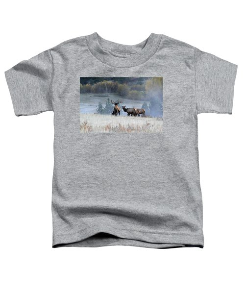Cool Misty Morning Toddler T-Shirt