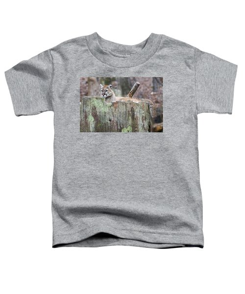 Cougar On A Stump Toddler T-Shirt