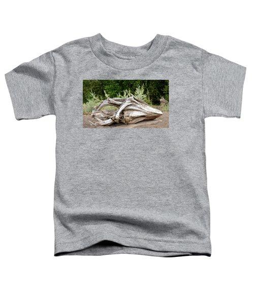 Cranial Drift Toddler T-Shirt