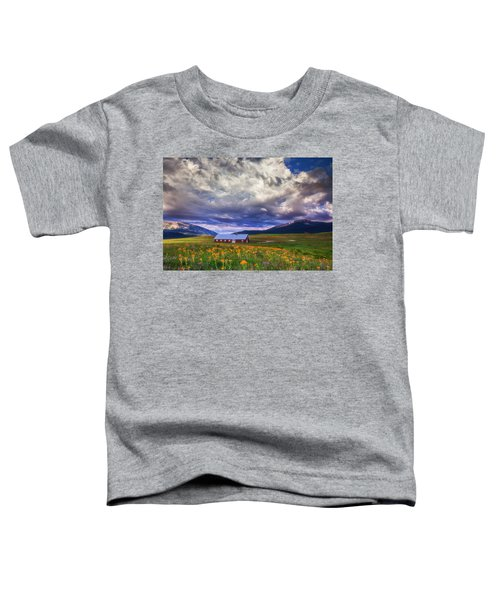 Crested Butte Morning Storm Toddler T-Shirt