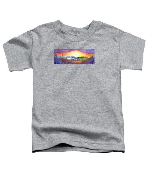 Dark Star Orchestra Dillon Amphitheater Toddler T-Shirt