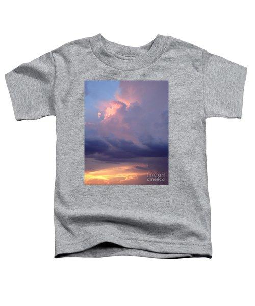 Desert Rainstorm 6 Toddler T-Shirt