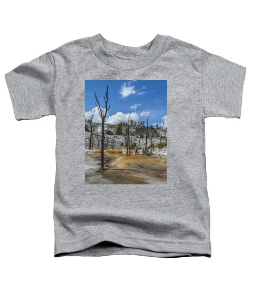 Desolation Yellowstone National Park Toddler T-Shirt