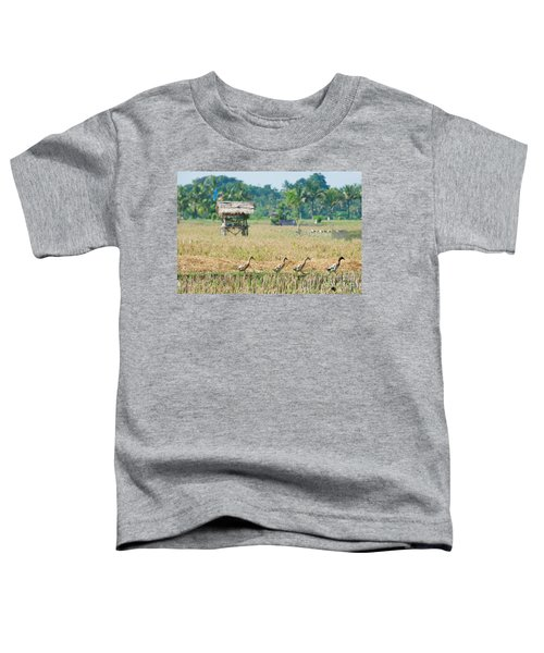 Ducks Toddler T-Shirt