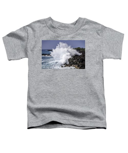 End Of The World Explosion Toddler T-Shirt
