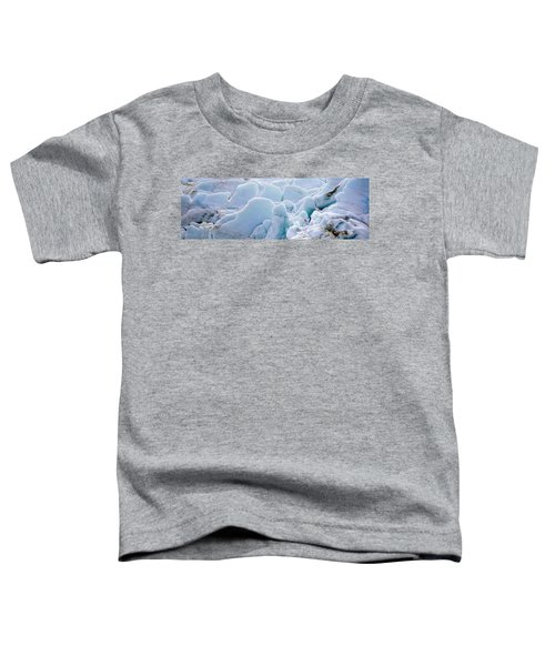 Exit Glacier At Harding Ice Field Toddler T-Shirt