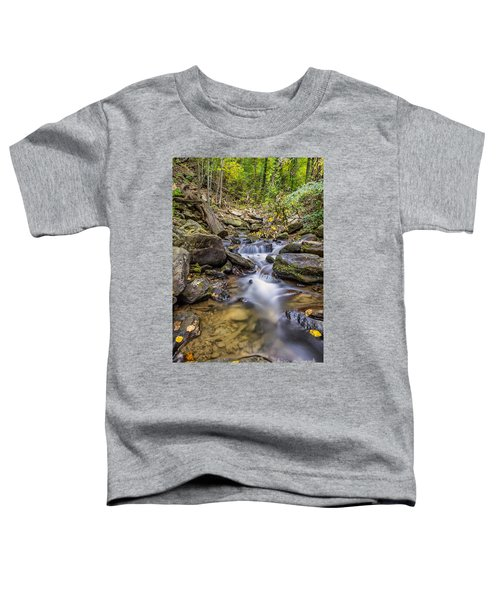 Fall Arrives At Amicalola Falls Toddler T-Shirt