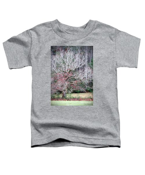 Fall At Cades Cove Toddler T-Shirt
