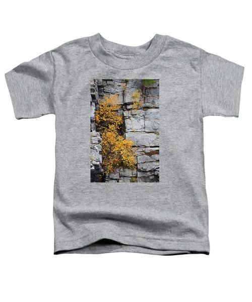 Fall Foliage Colors 01 Toddler T-Shirt