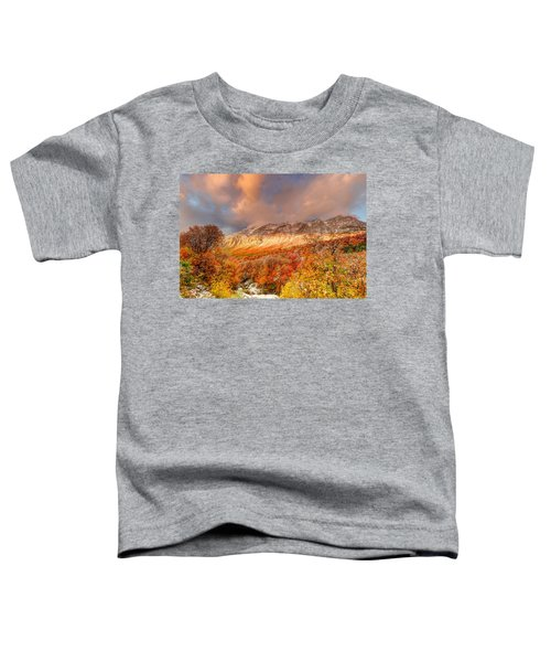 Fall On Display Toddler T-Shirt