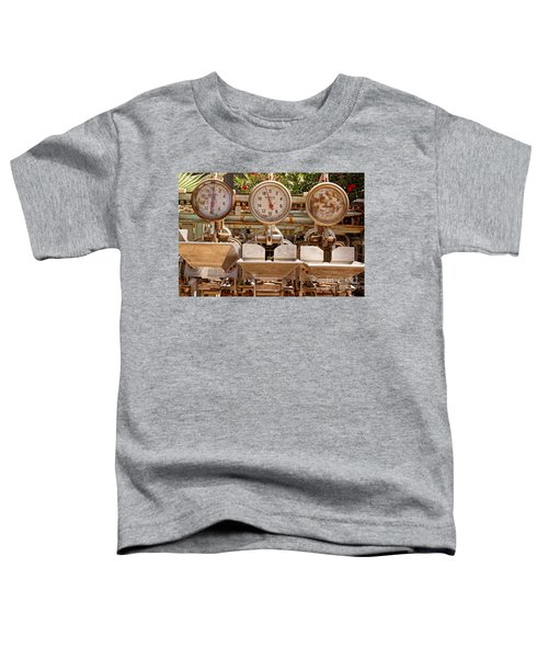 Farm Scales Toddler T-Shirt