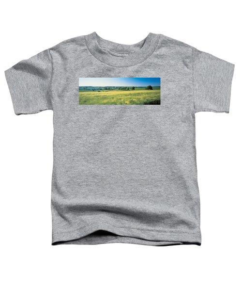 Field Near Barnstaple, North Devon Toddler T-Shirt