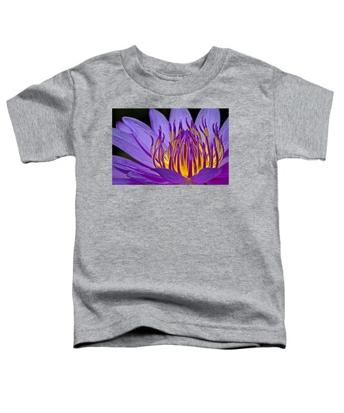 Flaming Heart Toddler T-Shirt