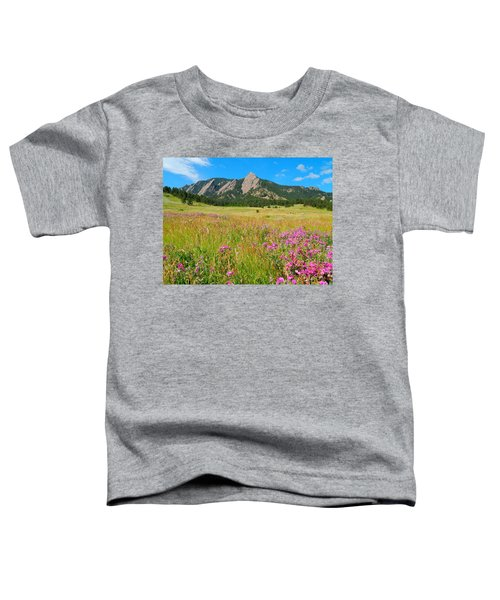 The Flatirons Colorado Toddler T-Shirt