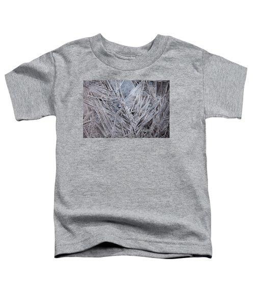 Frozen Fractal Toddler T-Shirt