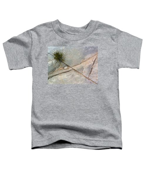 Fracture 1 Toddler T-Shirt