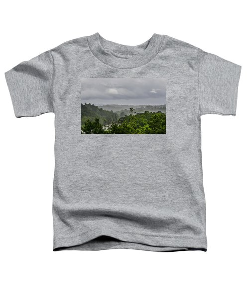 French Broad River Toddler T-Shirt