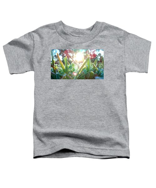 Frosty Flare Toddler T-Shirt