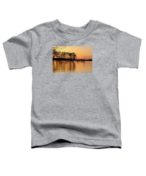 Gilded Sunset Toddler T-Shirt