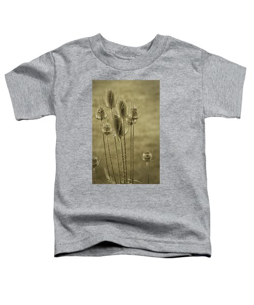 Golden Thistles Toddler T-Shirt