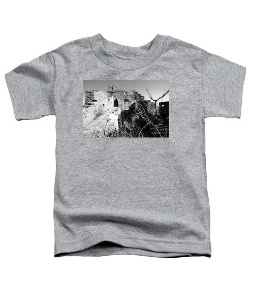 Great Wall Ruins Toddler T-Shirt
