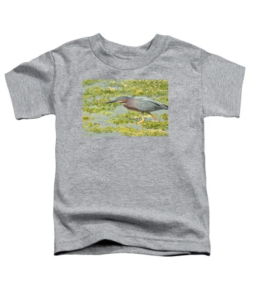 Green Heron On The Hunt Toddler T-Shirt