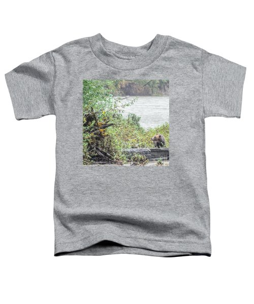 Grizzly Bear Late September 2 Toddler T-Shirt