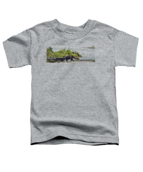 Grizzly Bear Late September 4 Toddler T-Shirt