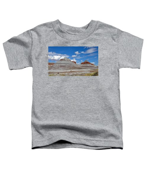 Petrified Forest National Park Toddler T-Shirt