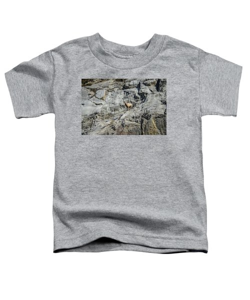 Big Horn Sheep Coming Down The Mountain  Toddler T-Shirt