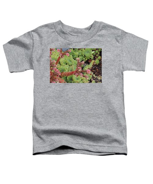 Hen And Chick In Bloom Toddler T-Shirt