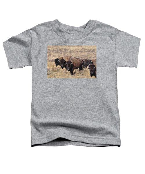 Home On The Range Toddler T-Shirt