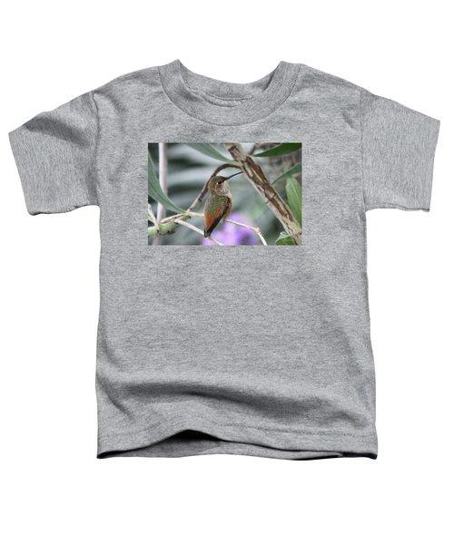 Hummingbird On A Branch Toddler T-Shirt
