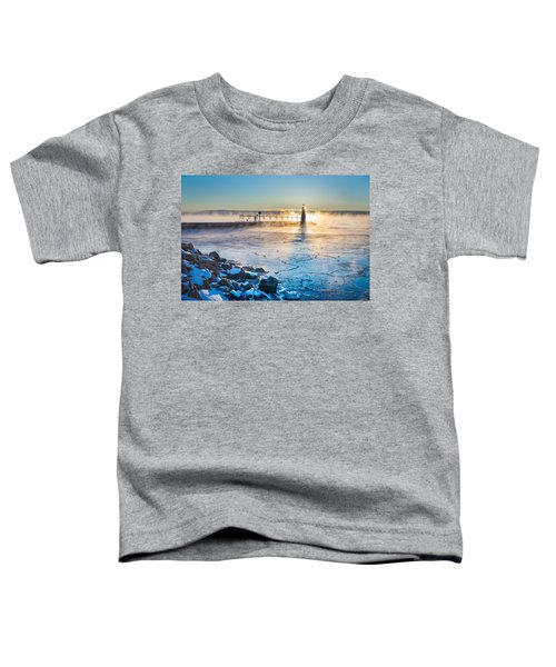 Icy Morning Mist Toddler T-Shirt by Bill Pevlor