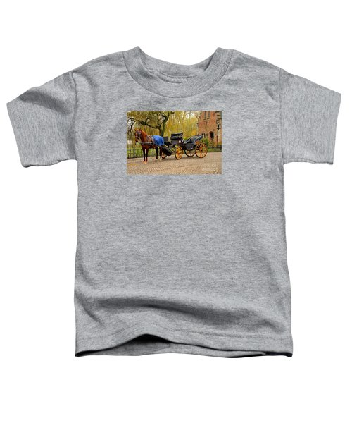 Immaculate Horse And Carriage Bruges Belgium Toddler T-Shirt
