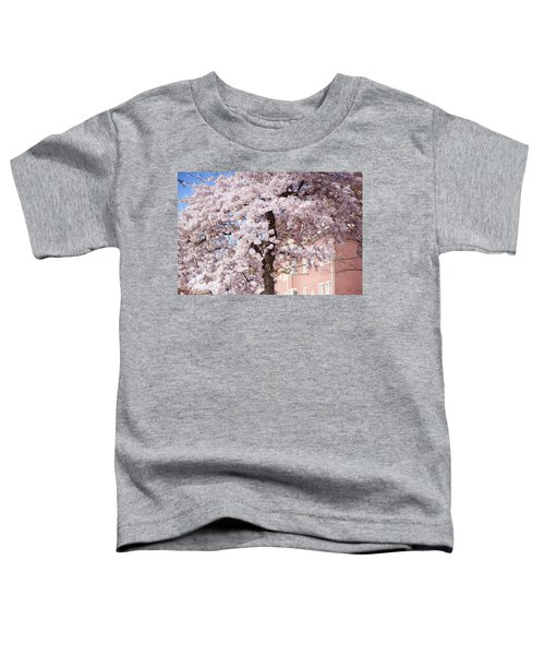 In Its Glory. Pink Spring In Amsterdam Toddler T-Shirt