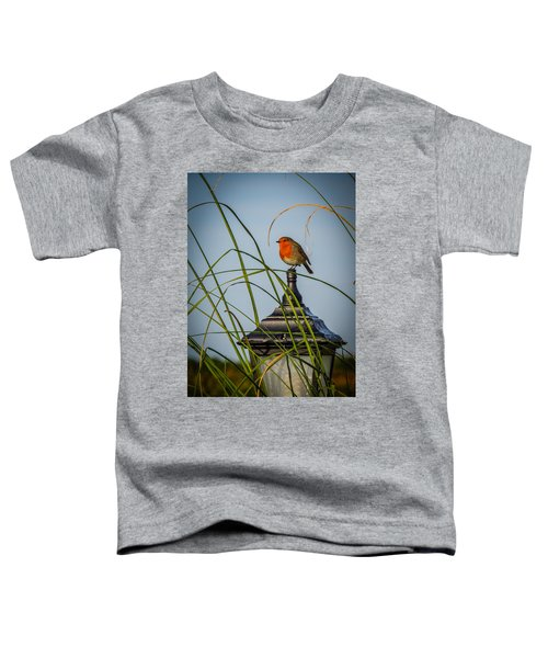 Toddler T-Shirt featuring the photograph Irish Robin Perched On Garden Lamp by James Truett