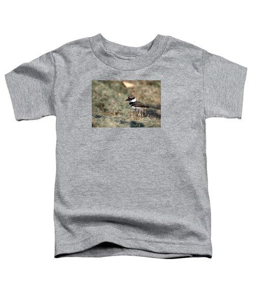 Its A Killdeer Babe Toddler T-Shirt by Skip Willits