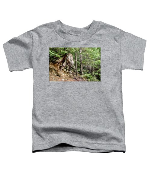 Just Hanging On Old Growth Forest Stump Toddler T-Shirt