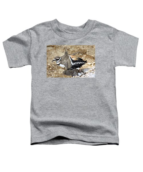 Killdeer Fakeout Toddler T-Shirt